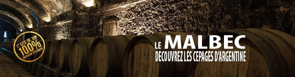 Les vins rouges argentins, le Malbec et au delà...