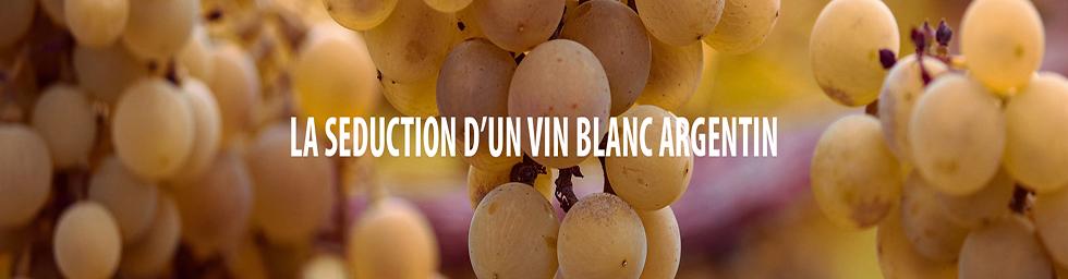 Laissez vous séduire par les vins blancs argentins